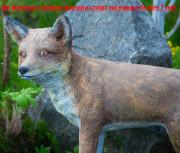 Скульптура для сада «Лисица»