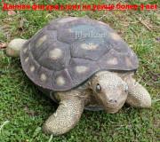 Садовая скульптура «Черепаха малая»