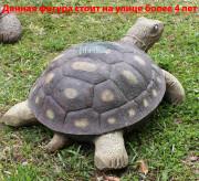 Фигура для сада «Черепаха малая»