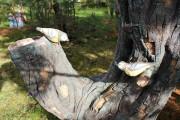 Малая архитектурная форма «Дерево (Цветник, 4 кашпо)»